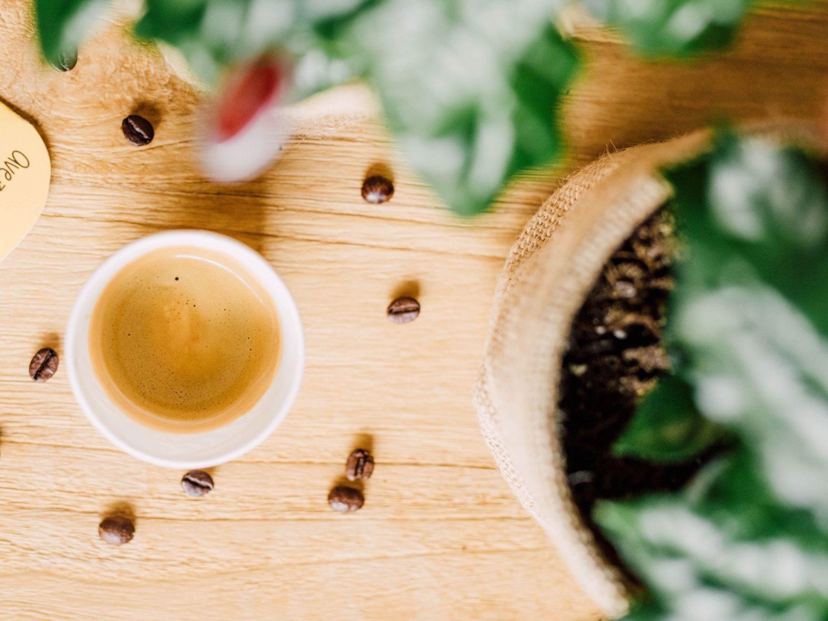 Macadamia Vanilla Flavoured Espresso Senseo® x 10