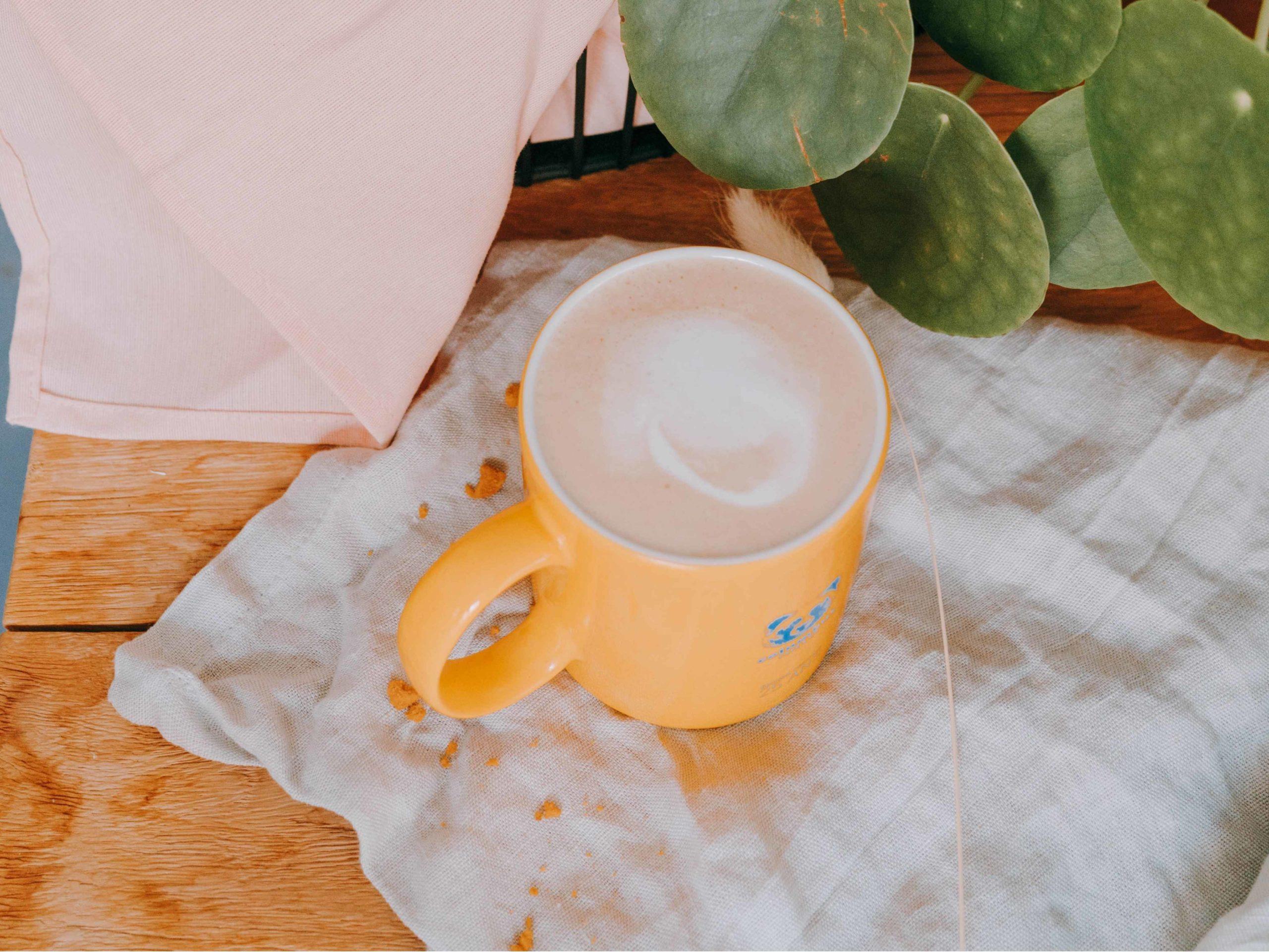 Latte de l'Ours Tassimo® x 16